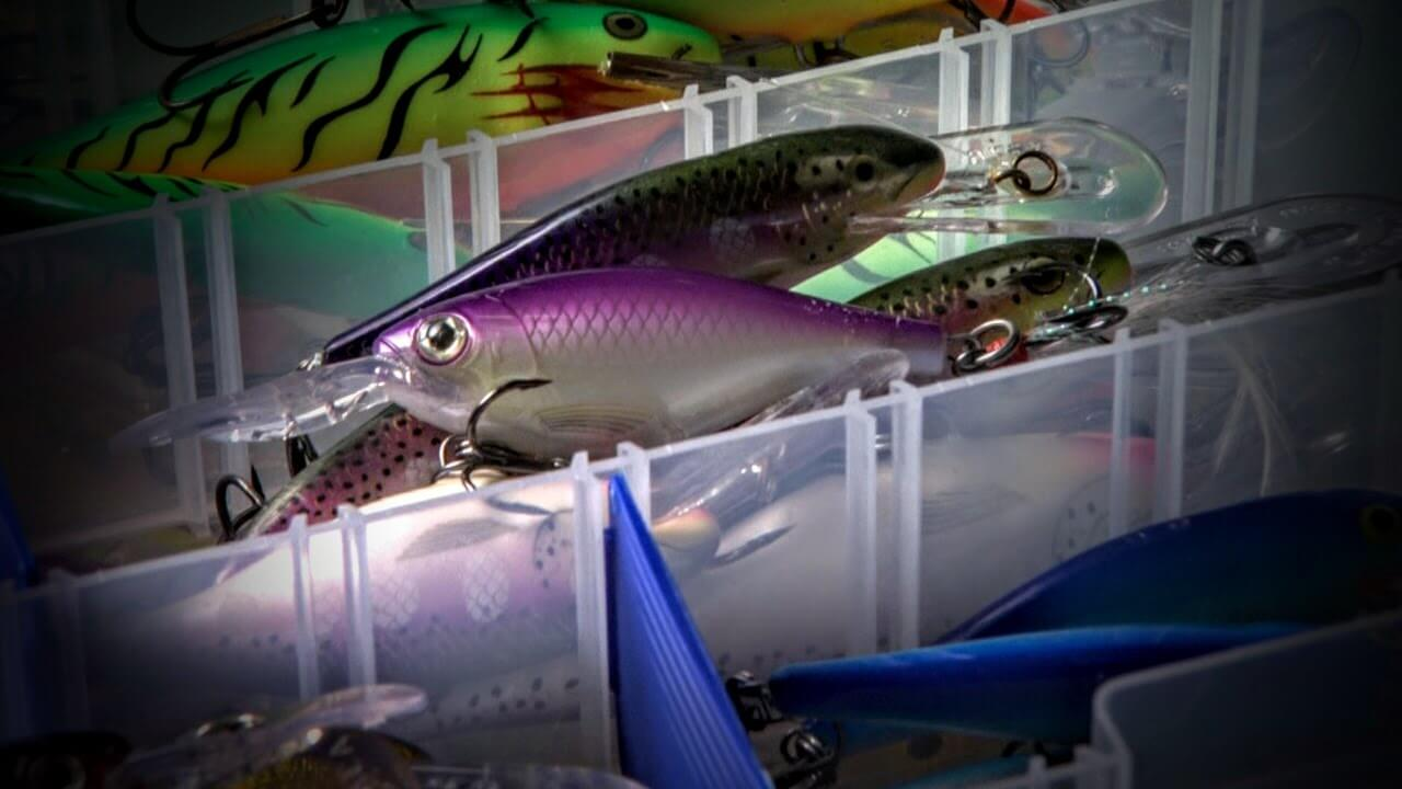 Best Fishing Lures For Trout