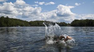 Learn how to swim