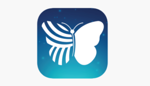 Quiver Apps