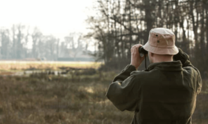 Hunting Regulations Set by USFWS